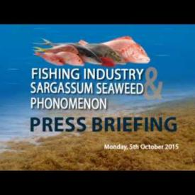 Embedded thumbnail for Press Briefing: Fishing Industry and Sargassum Seaweed Phonomenon