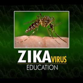 Embedded thumbnail for GIS Report - ZIKA Virus Education