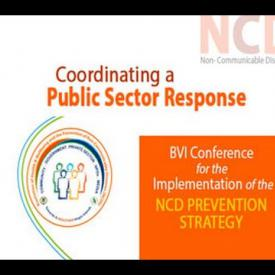 Embedded thumbnail for NCD Prevention Strategy - Coordinating a Public Sector Response