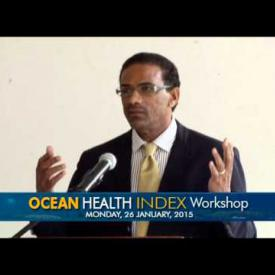 Embedded thumbnail for Ocean Health Index Workshop - January 26 2015